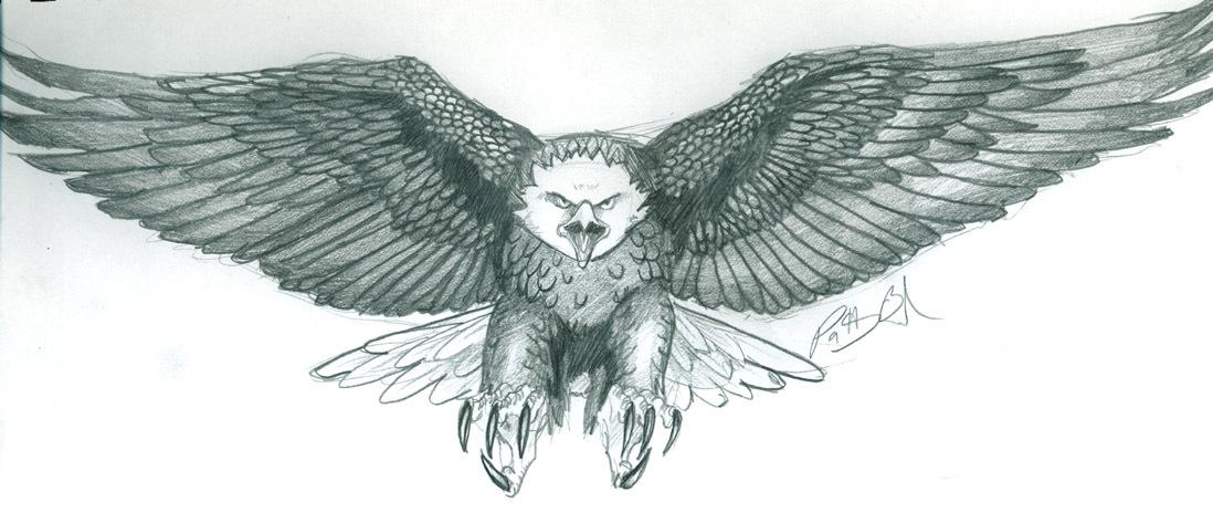 Eagle Tattoo Designs