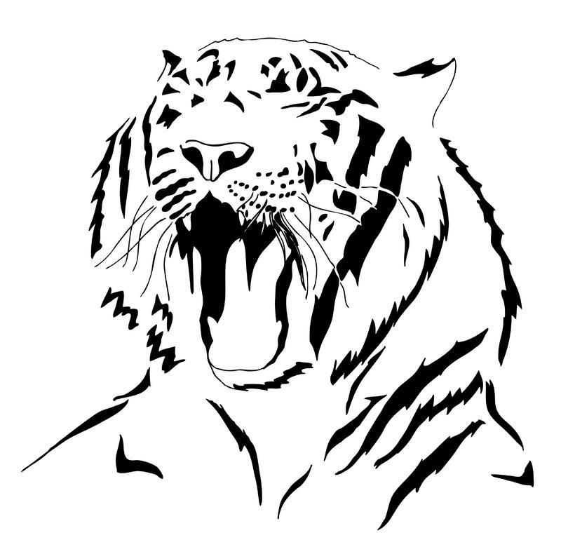white tiger tattoos - 800×790