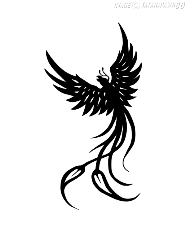 6acd7f71f 31+ Nice Phoenix Tattoos Designs And Pictures Ideas