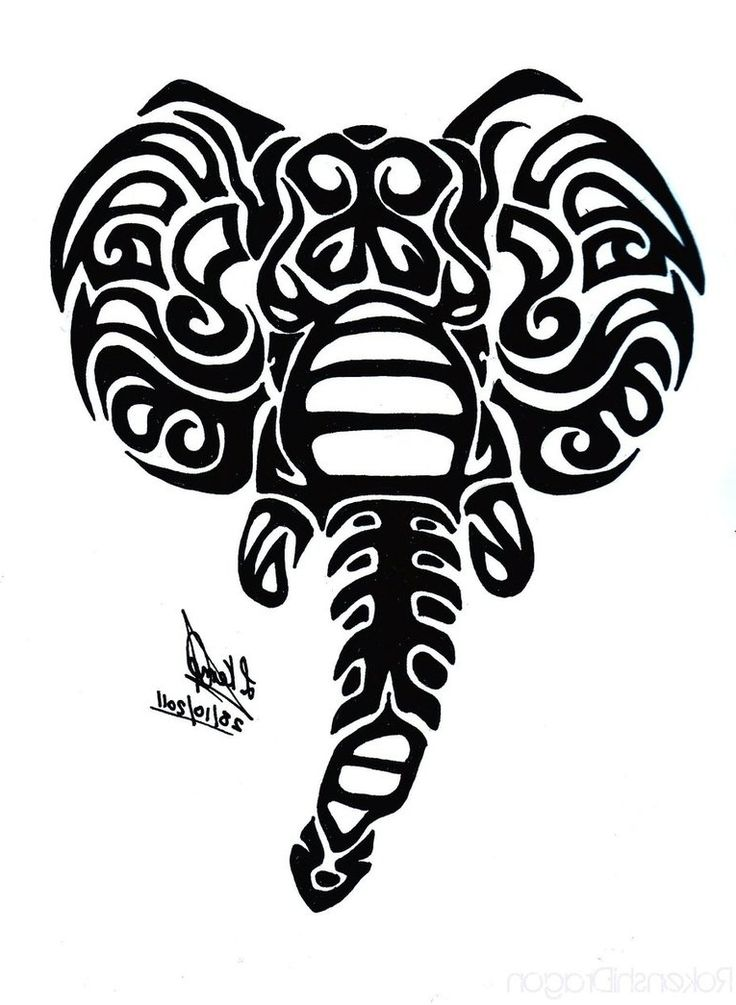 Elephant Tribal Tattoo - Tattoo Collections