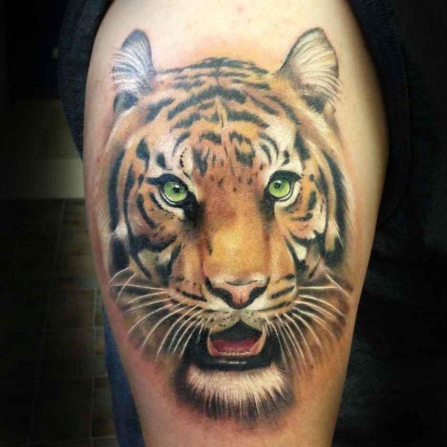 Green Eyes Tiger Head Tattoo On Bicep