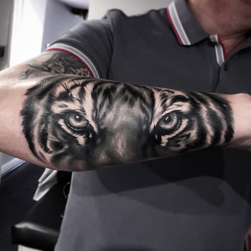 Grey And Black Tiger Focus Eyes Tattoo On Right Arm