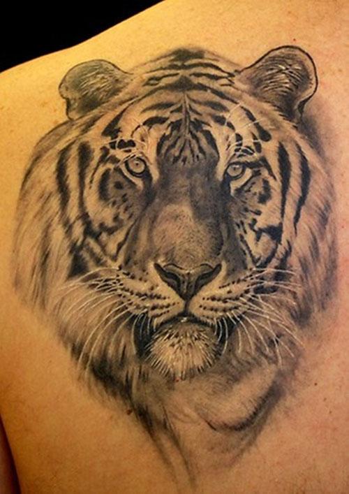 Grey And Black Tiger Head Tattoo On Left Back Shoulder