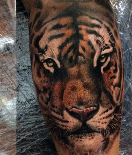 bb49fd564 Amazing Angry Tiger Head Tattoo On Forearm by Clayton Howell