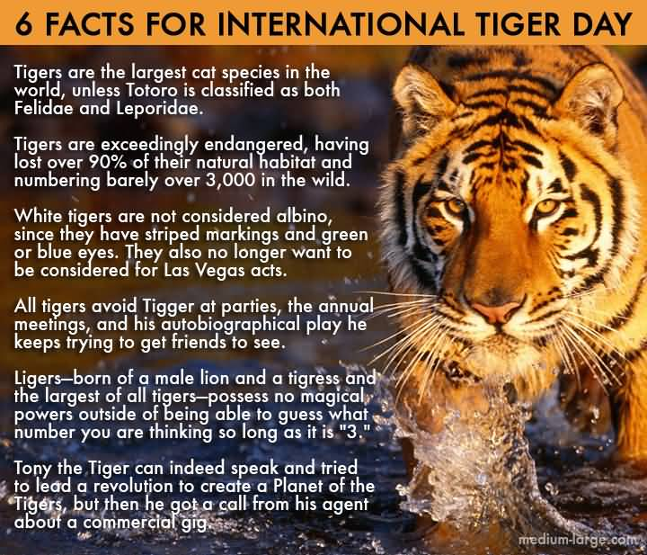 50+ International Tiger Day Pictures And Wishes