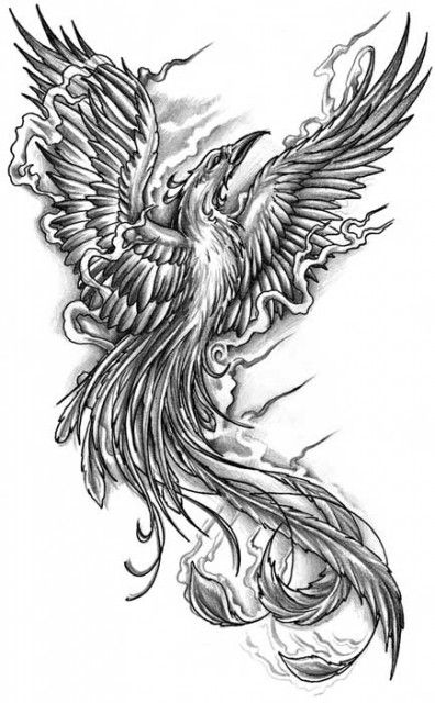 celtic phoenix tattoo design by babakch2. Black Bedroom Furniture Sets. Home Design Ideas