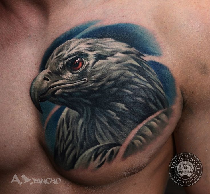 realistic eagle head tattoo on chest by a d pancho. Black Bedroom Furniture Sets. Home Design Ideas