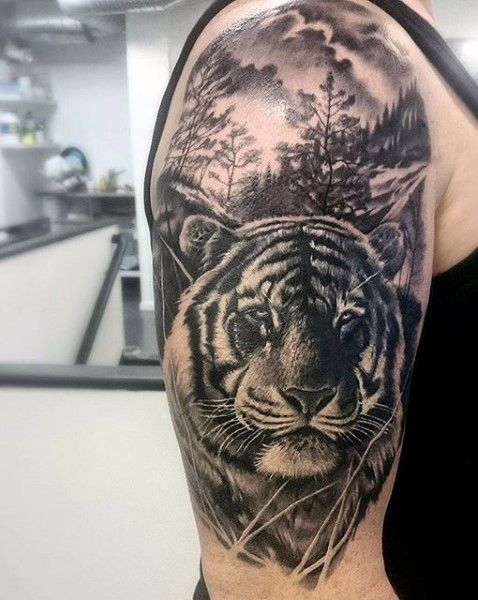 Realistic Grey And White Tiger Head Tattoo On Man Right Half Sleeve