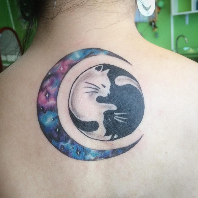 3eb022c8f Black And White Cats With Watercolor Moon Tattoo On Girl Upper Back