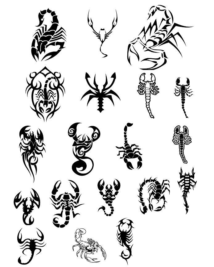 70 Scorpion Tattoos And Ideas With Meanings