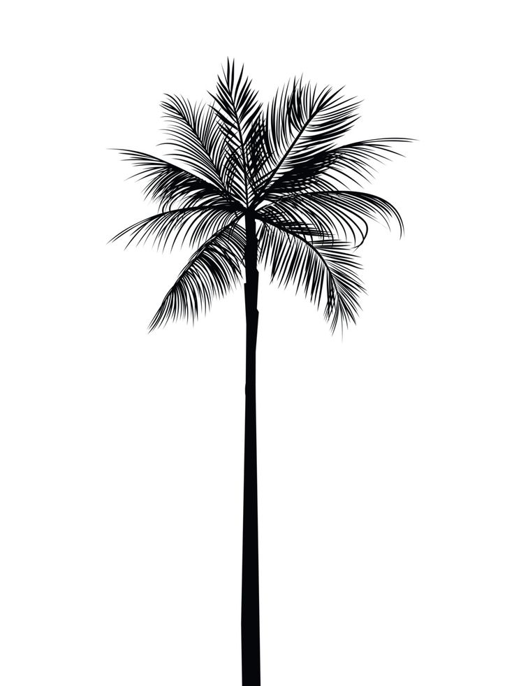 Black Ink Palm Tree Tattoo Design