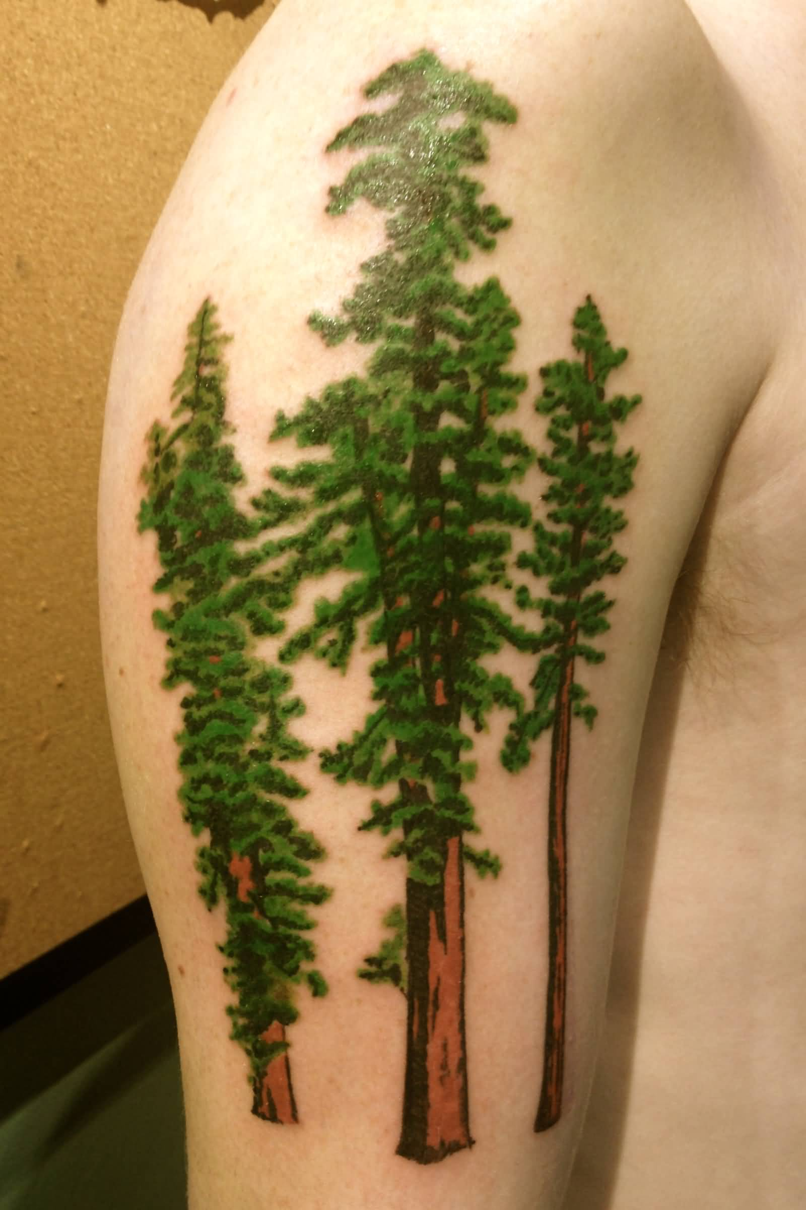 Green ink pine tree tattoos on shoulder for men for Pine tree tattoo ideas