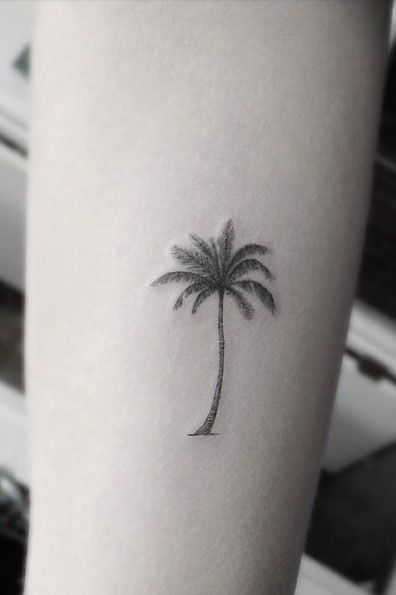 75+ Beautiful Palm Tree Tattoos With Meanings