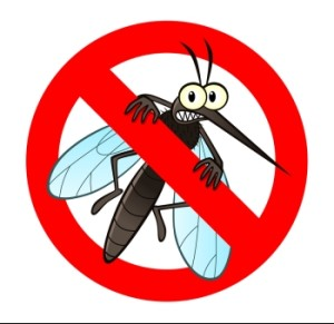 It S World Mosquito Day And The U Ran Out Of Yellow Fever Vaccine Sort