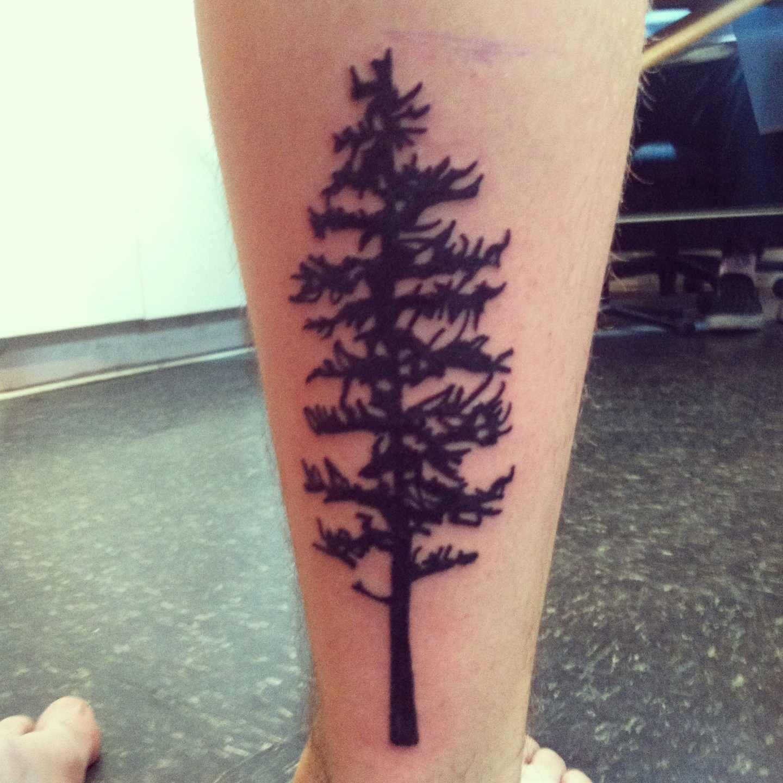 Tree Side Tattoo: 81+ Pine Tree Tattoos And Ideas