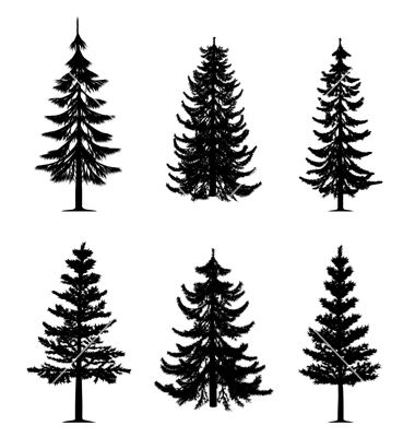 81+ Pine Tree Tattoos And Ideas