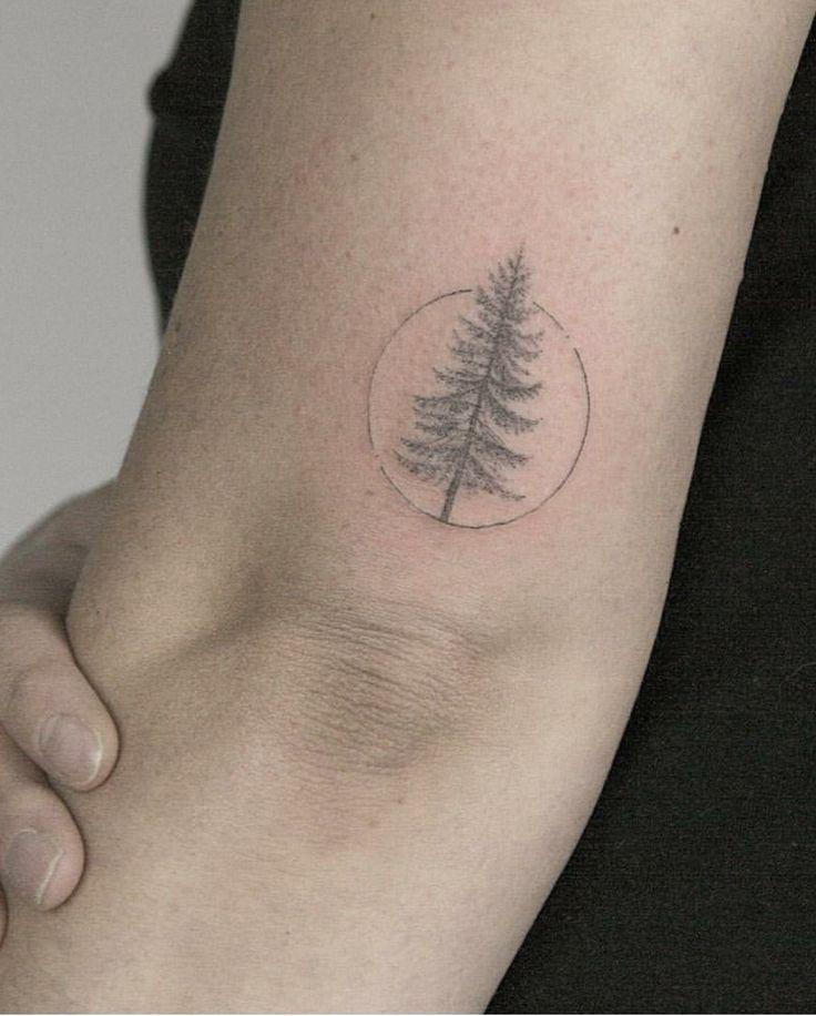 81+ Pine Tree Tattoos And Ideas
