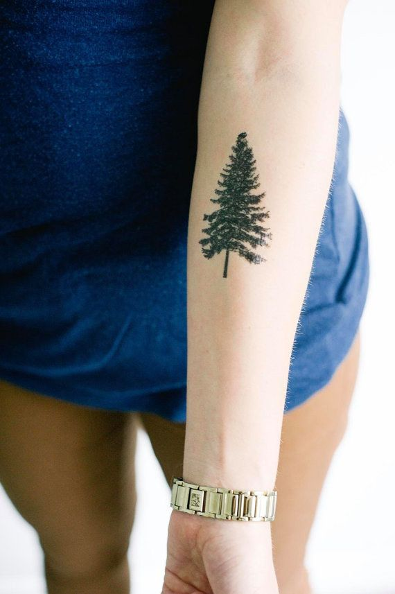 81 pine tree tattoos and ideas for Tree tattoo on forearm
