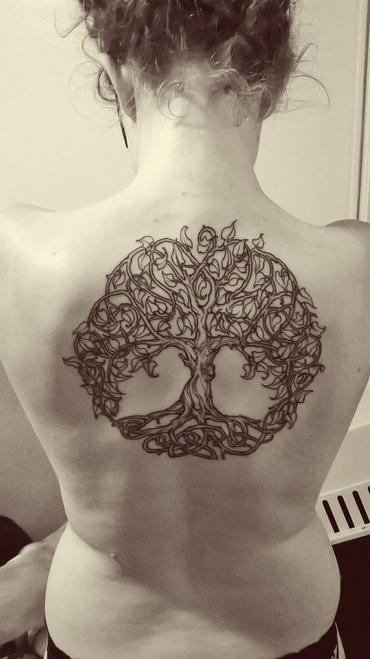 tree of life tattoo on girl upper back for girls. Black Bedroom Furniture Sets. Home Design Ideas