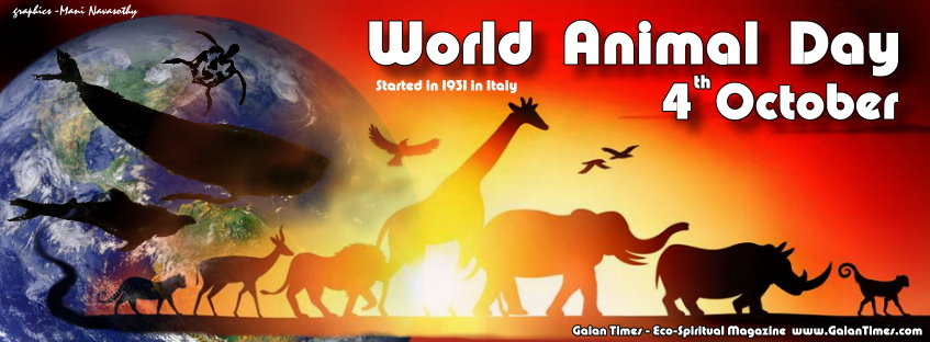 World Animal Day Wishes HD Image