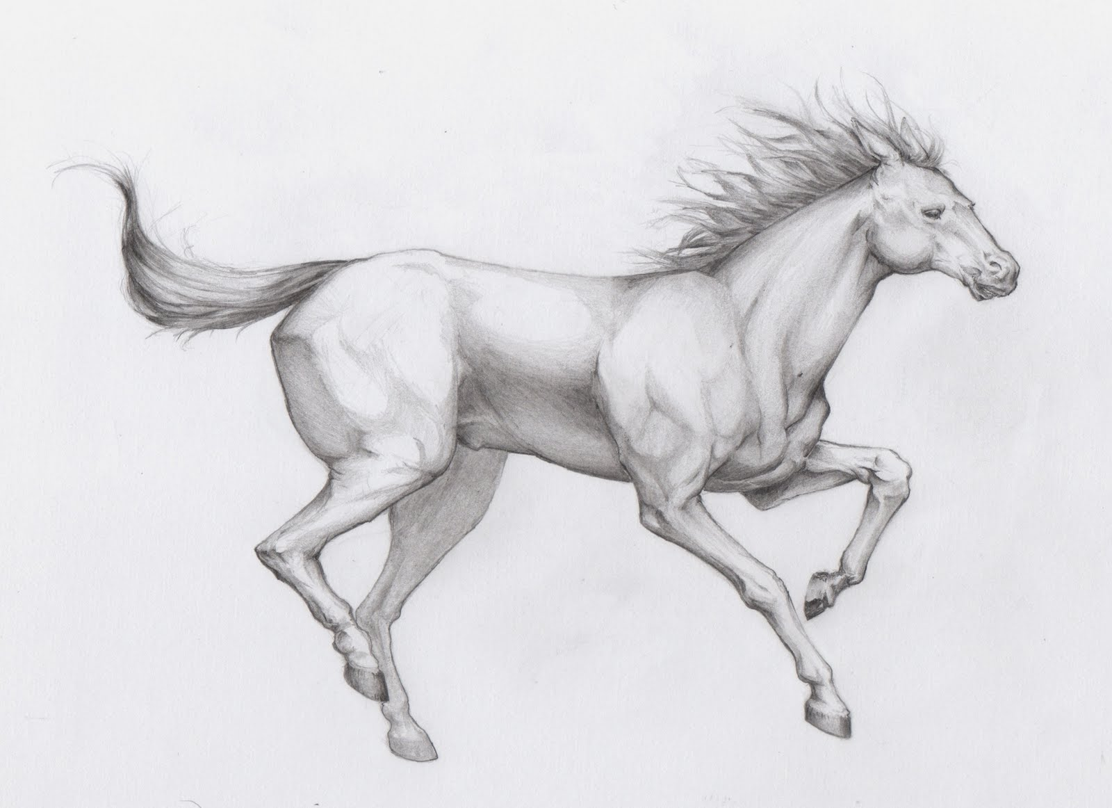 62 Running Horse Tattoos Ideas