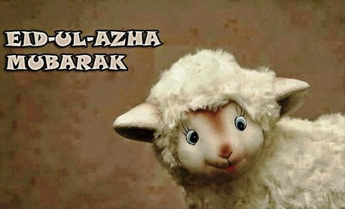 تهنئــة لأعضــاء المنتــدى بمناسبة عيد الأضحــى المبــــارك ...
