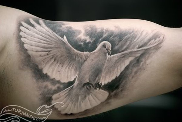 aff01d204 Grey And White Flying Dove Tattoo On Inner Bicep