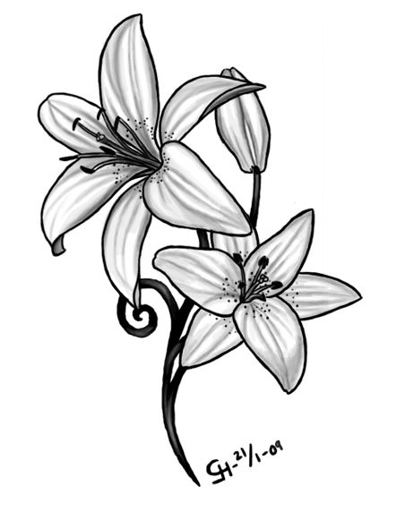 Grey Lily Flowers Tattoo Design