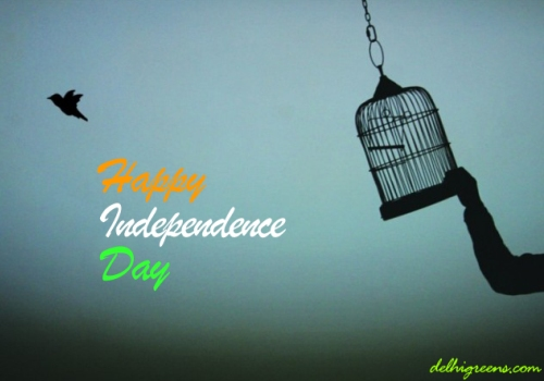 https://www.askideas.com/wp-content/uploads/2017/07/Happy-Independence-Day-Bird-Fly-Out-Of-Cage.jpg