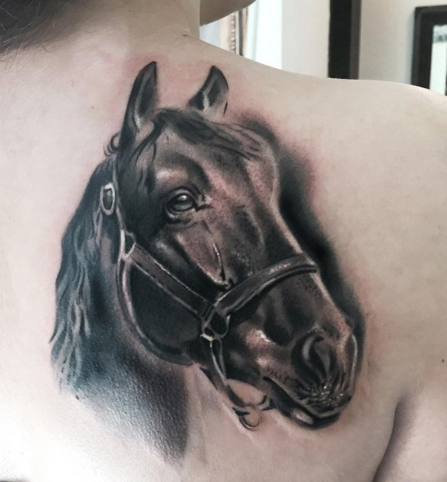 78 horse tattoos meanings and design ideas rh askideas com horse head tattoo designs horse head tattoo ideas