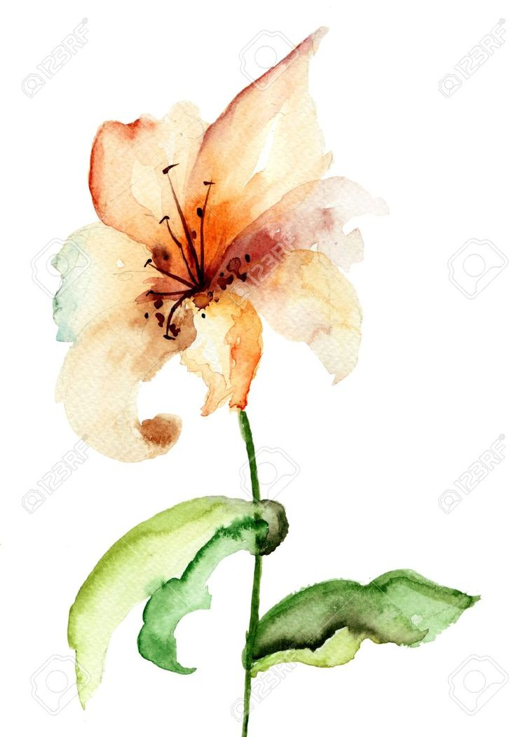 Watercolor Lily Flower Tattoo Design