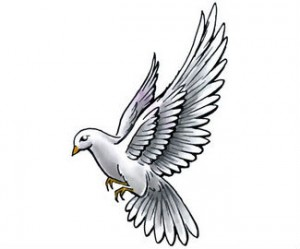 white and grey flying dove tattoo design. Black Bedroom Furniture Sets. Home Design Ideas