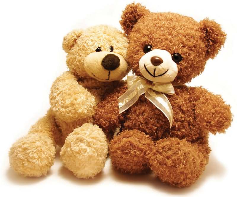 happy national teddy bear day two cute teddy bears
