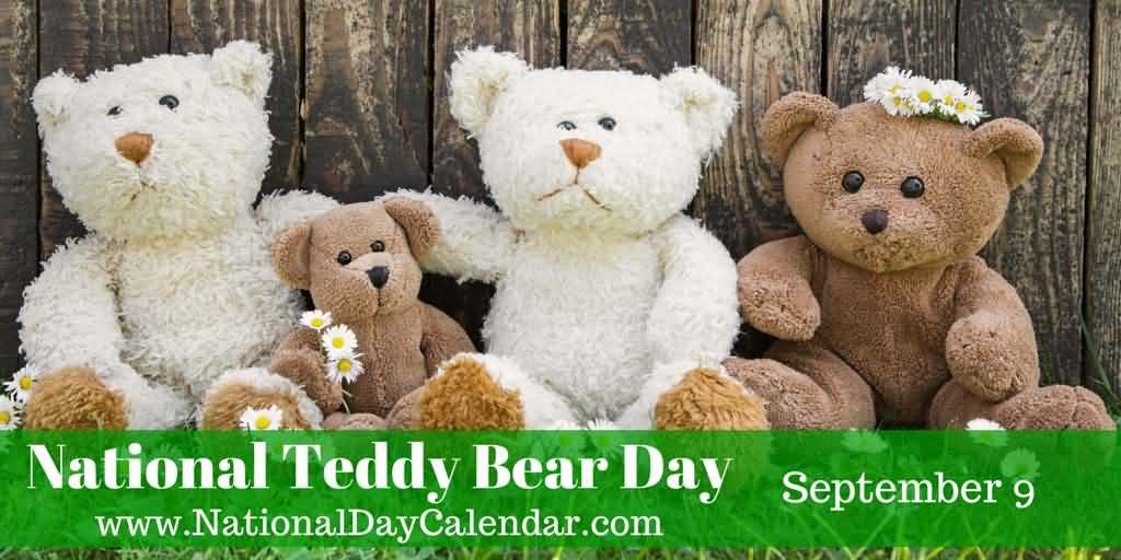 National Teddy Bear Day September 9 Cute Teddy Bears