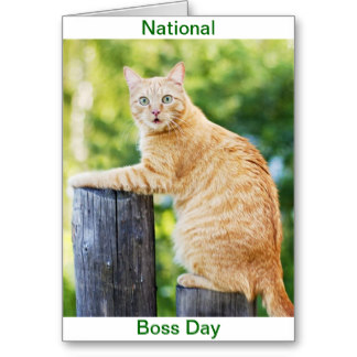 51 Most Amazing Boss Day Greeting Picture Ideas