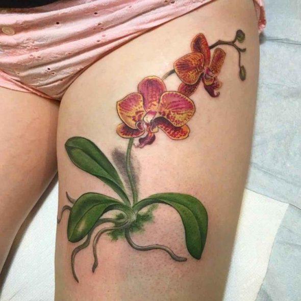 Black Orchid Tattoo Ecosia