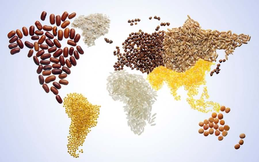world food day world map of pulses