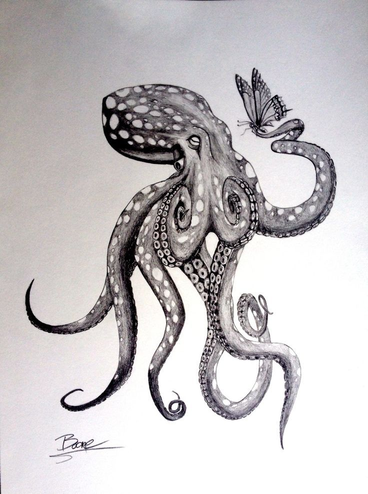 Black Grey Realistic Octopus Tattoo Design I'll show you an easy way to create a pencil sketch. grey realistic octopus tattoo design