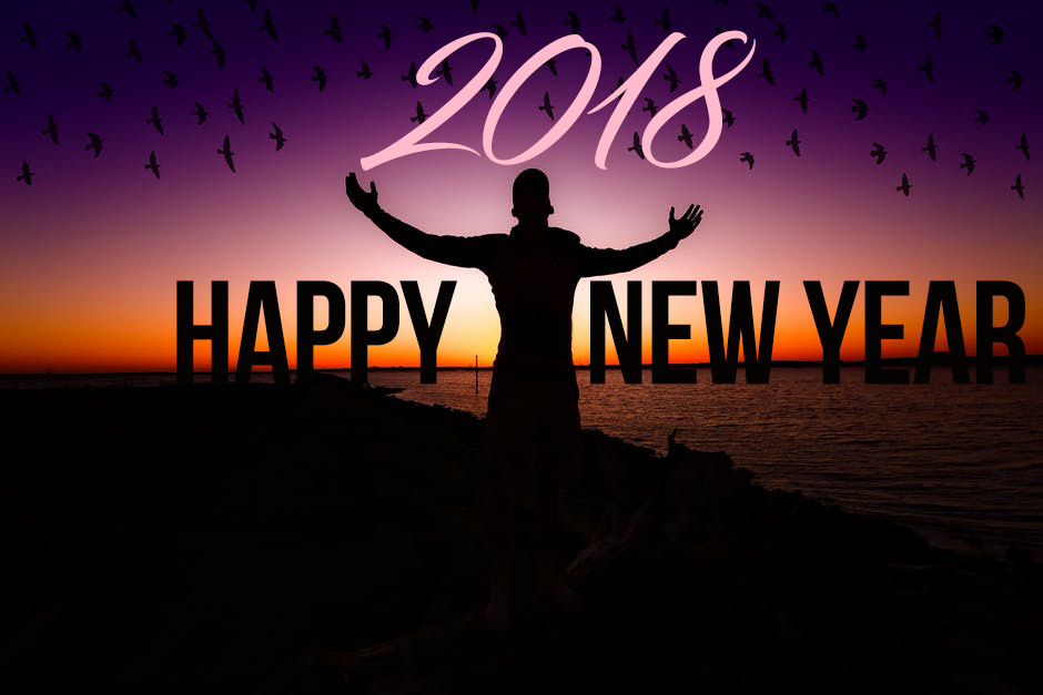 happy new year 2018 flying birds and man picture