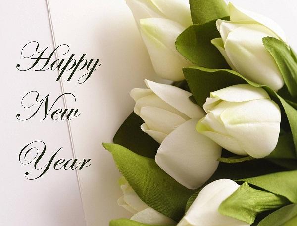 70 Best Happy New Year Greeting Ideas