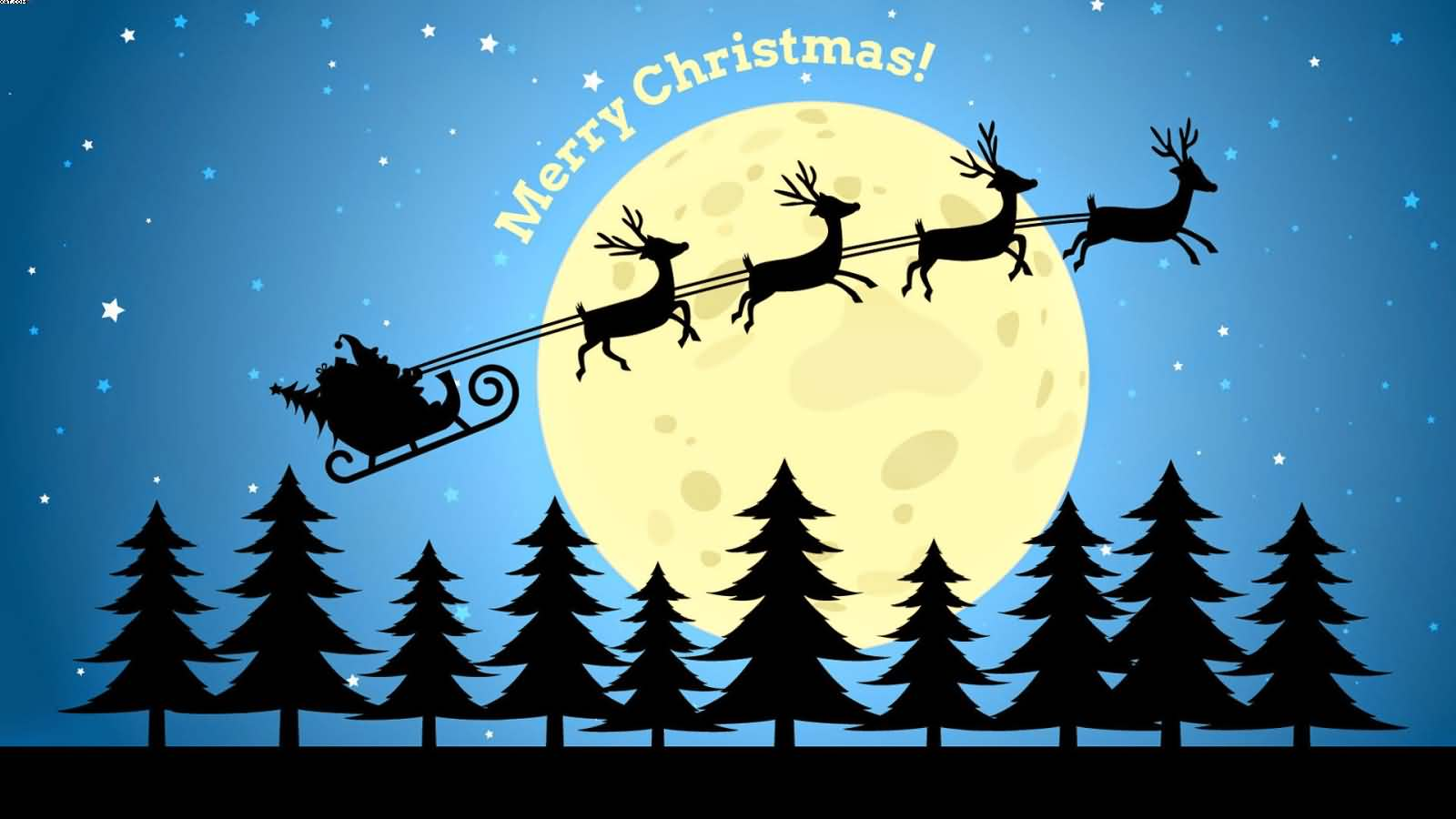Merry Christmas Deers pulling Santa Sledge beautiful night full moon