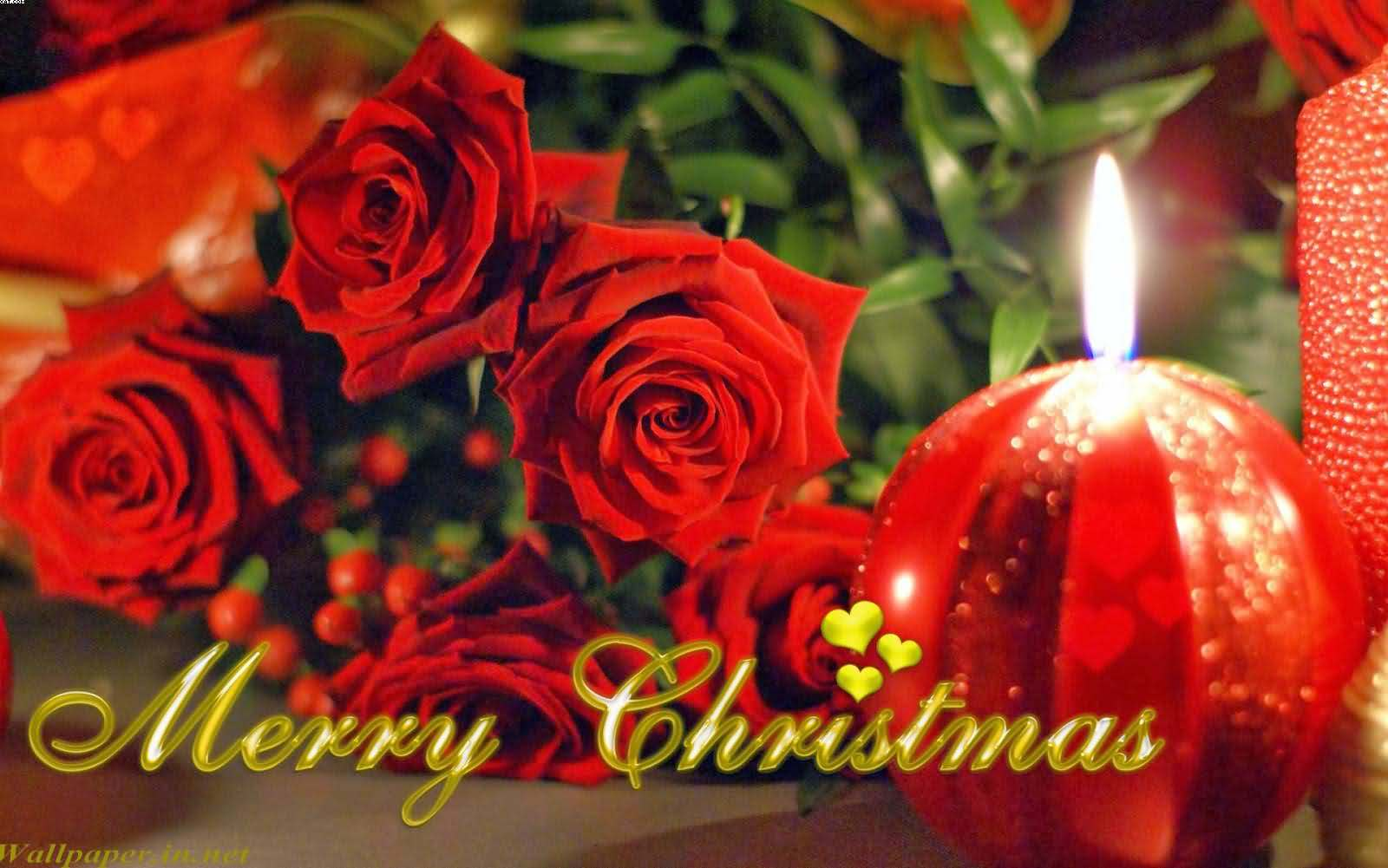 70 Most Beautiful Merry Christmas 2017 Greeting Ideas