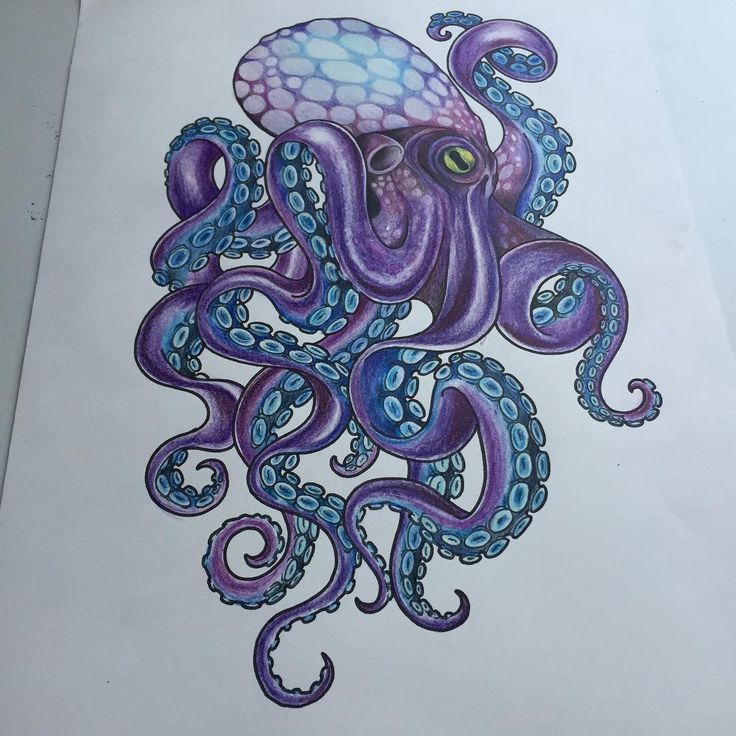 111 octopus tattoos designs ideas with meanings. Black Bedroom Furniture Sets. Home Design Ideas