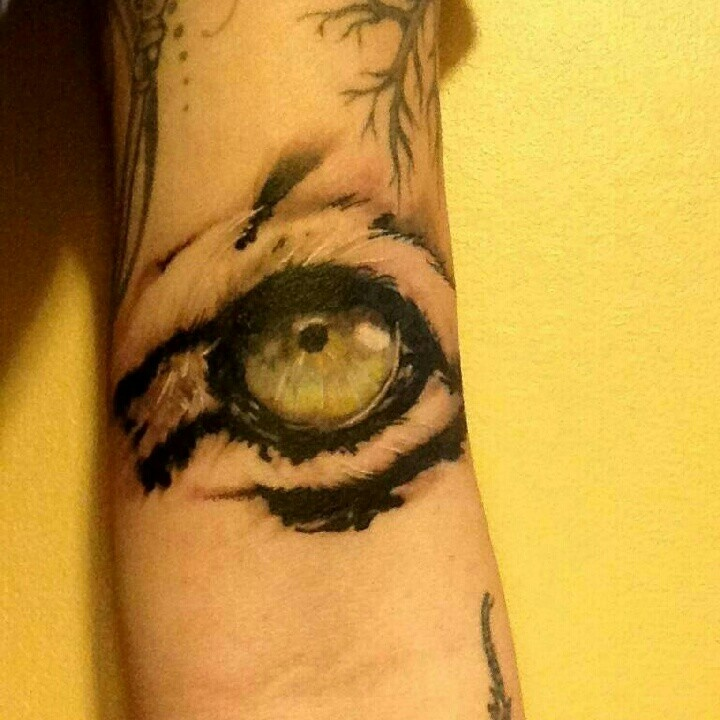 Eye Of The Tiger Tattoo On Arm