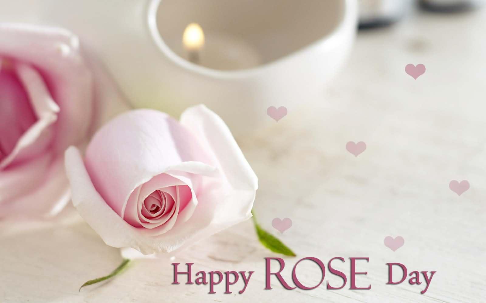 Happy rose day beautiful white roses flowers wallpaper mightylinksfo