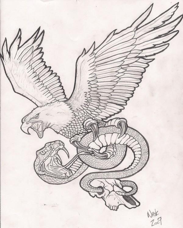 Eagle Tattoo Line Drawing : Remarkable eagle snake tattoos designs with meanings