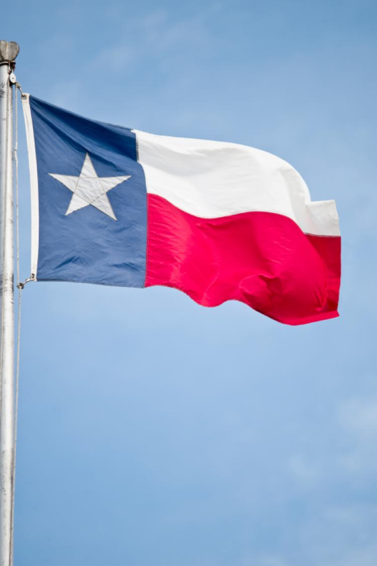 Happy Texas Independence Day Waving Flag