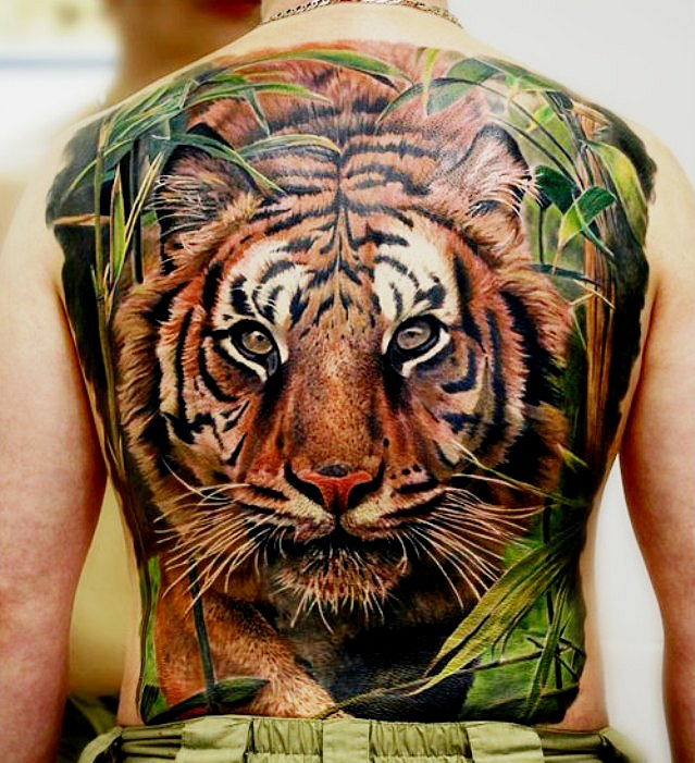 38+ Wonderful Colored Tiger Tattoos & Design With Meanings