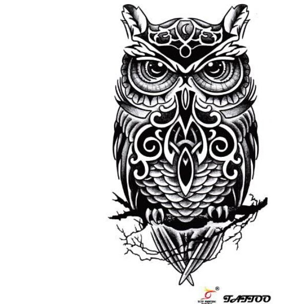 21 Catchy Black Ink Tattoos Designs By Hugo: 21+ Best Celtic Owl Tattoos & Designs
