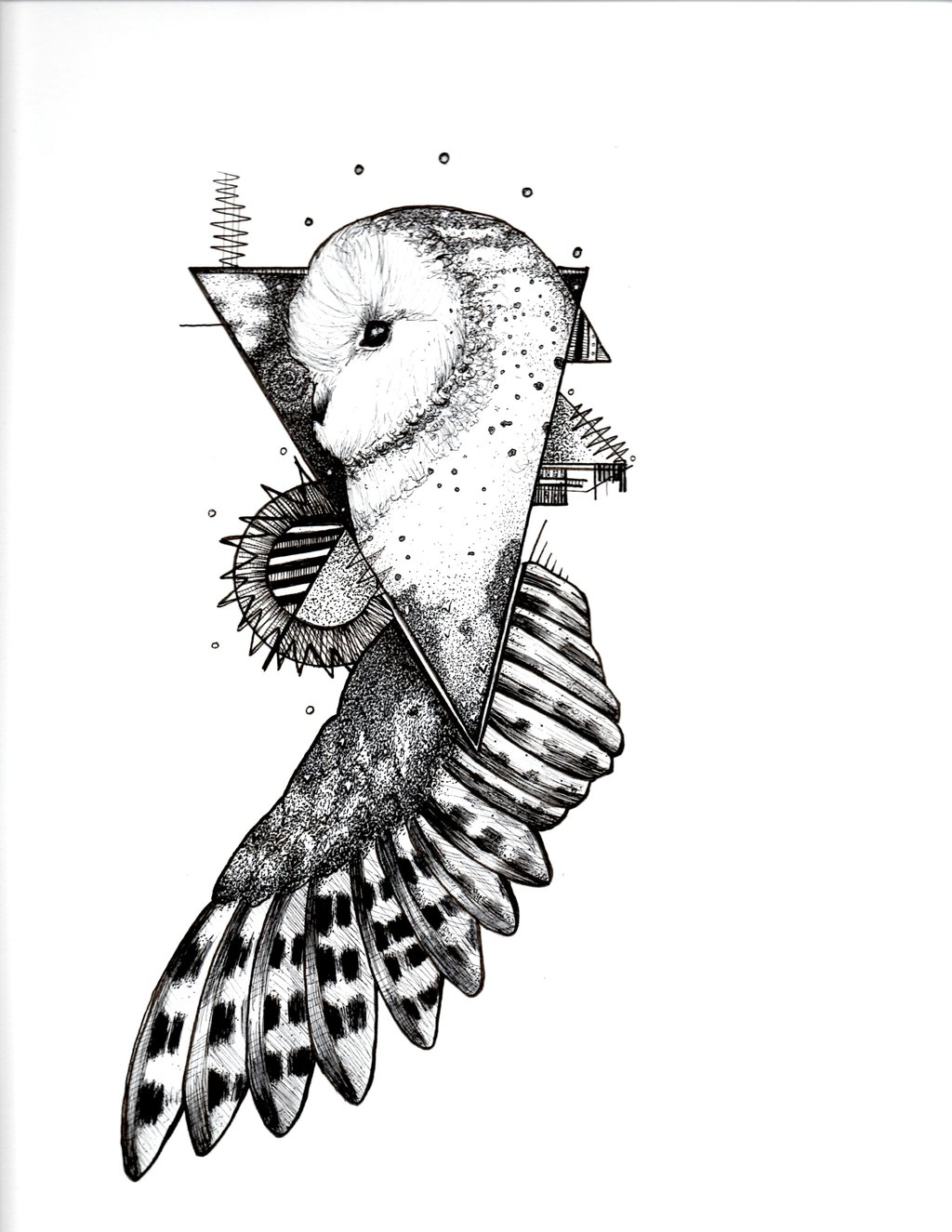 Incredible Black White Barn Owl In Triangle Tattoo Design By
